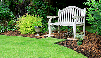 Wooden Bench In a Garden
